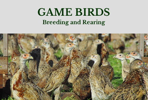 Heart of England Farms | Warwickshire based game farm with