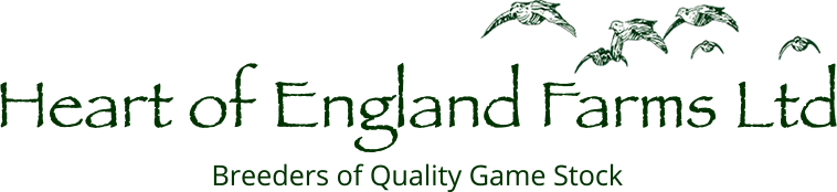 Heart of England Farms Ltd - Breeders of Quality Game Stock and Producers of Christmas Fayre